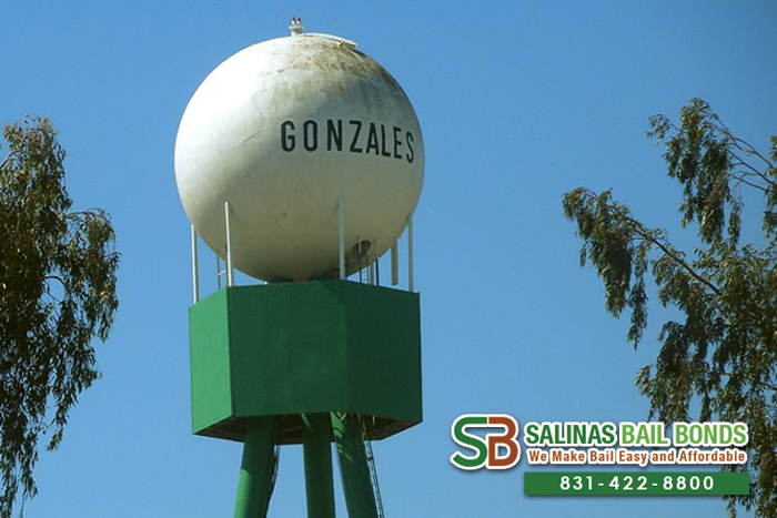 Gonzales Bail Bond Store