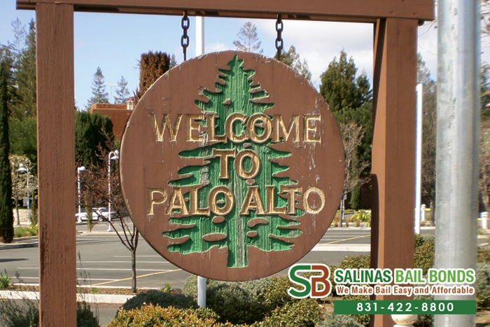 Palo Alto Bail Bond Store