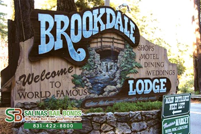 Brookdale Bail Bond Store