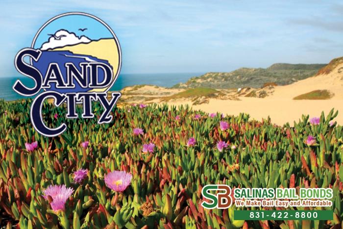 Sand City Bail Bond Store