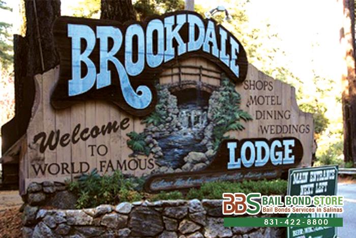 Brookdale Bail Bonds
