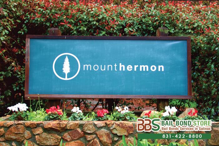 Mount Hermon Bail Bonds